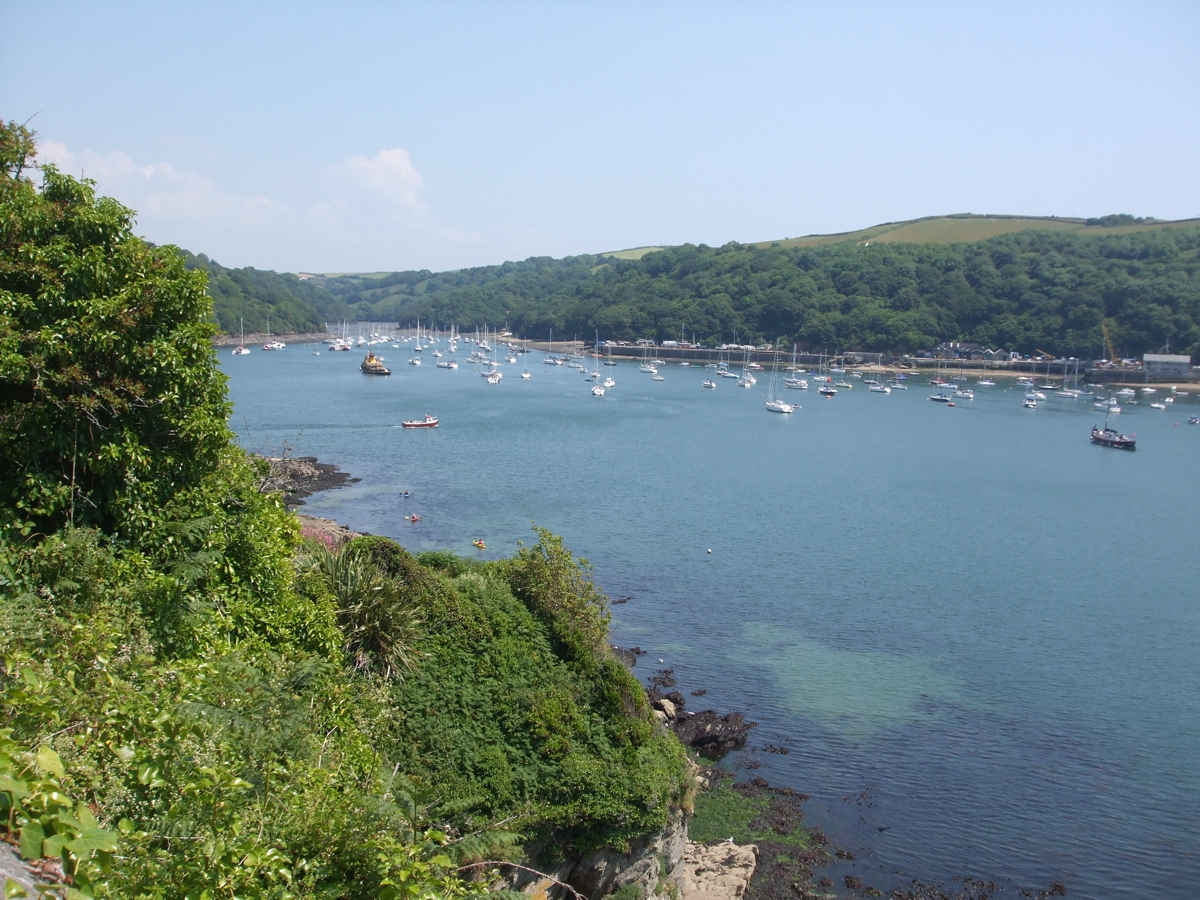 up river fowey