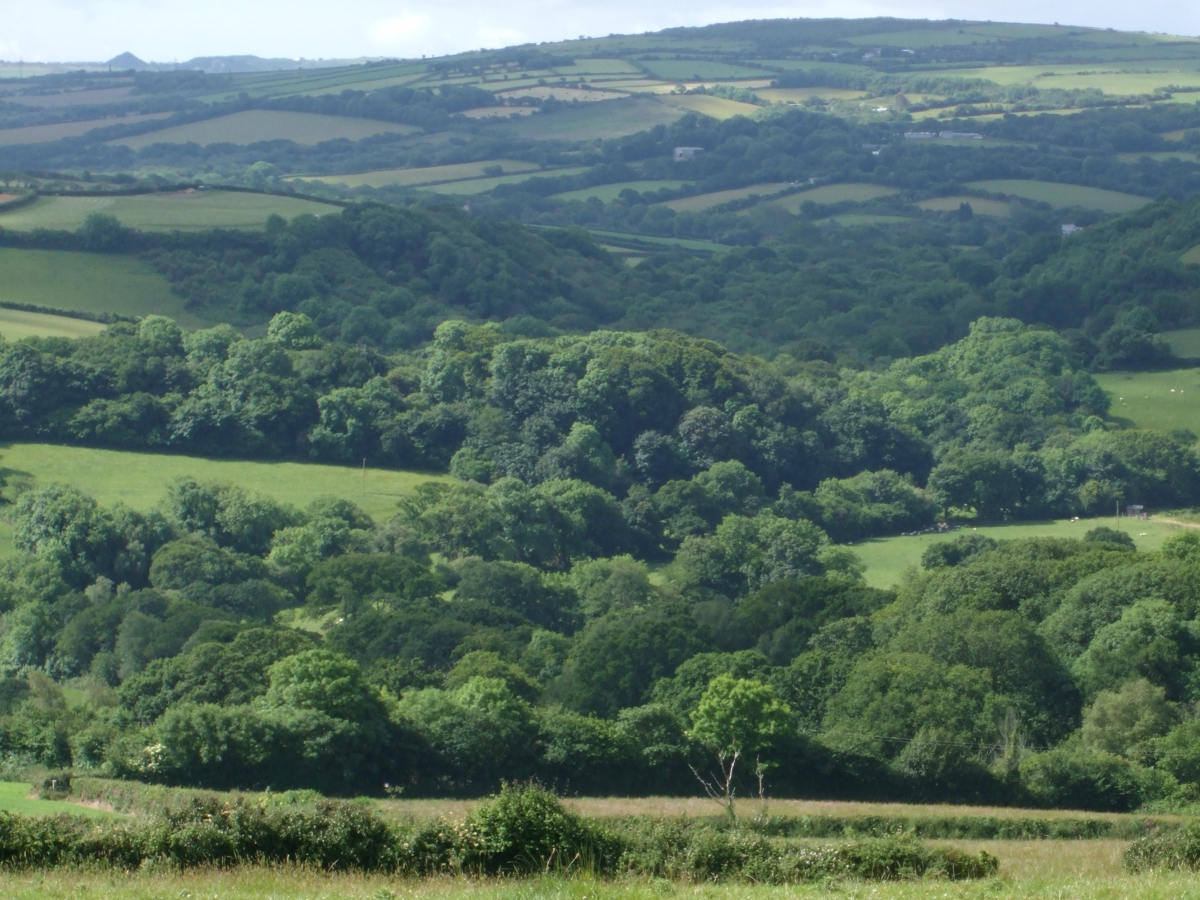 valley to withiel