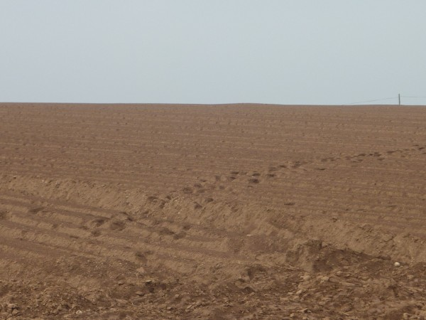 dry tracks across parched farmland